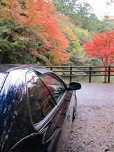 千葉の南房総の小松寺の紅葉