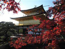 京都の紅葉(^O^)/