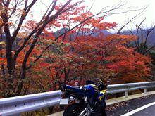 秋のバイクシーズン!道志へ【走り納め】