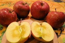 ♪蜜たっぷりの長野の林檎を頂きました~すごい蜜です(#^_^#)