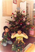 今年のクリスマスツリーはでかい!
