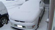 真冬日・・・
