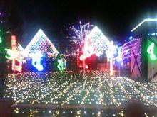 東京ドイツ村なう
