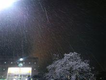 雪のメリークリスマス