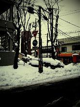 今日も雪~
