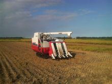 今年やった農作業。9月10月稲刈り。