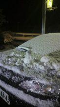 雪が凄いデスね