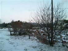 降雪 廣島中部は雪模様