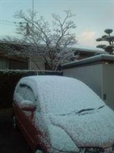 今日の熊本県北部 101231
