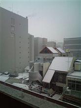 大雪ですが。