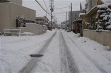 雪、多いですね