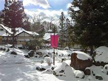 雪が降る中 八ヶ岳リゾートに 行ってきました!