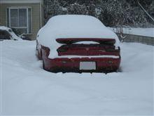 2011豪雪・・・