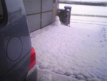 やっぱり雪です