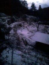 また雪が降った!