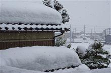【いきいき富山】 今年の雪ときたら・・・