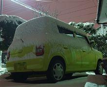 今夜は結構雪が・・