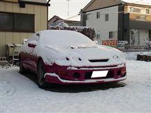 今朝はマイナス9度ですって、、、セリカも雪積もってる
