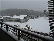 今年は雪多いですね