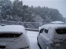 再び大雪でした(^_^;)