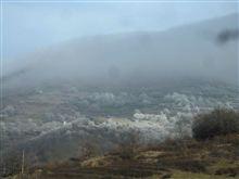 フランスアルプスの気候