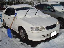 東京でも雪でんなぁ~♪