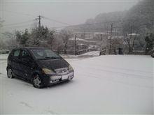 今日も雪が…
