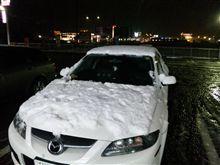 雪だぁーっ!!