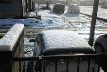 雪の朝・・