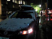 雪、積もった!?