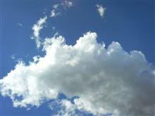 強風でしたが・・・。青空で癒されました。