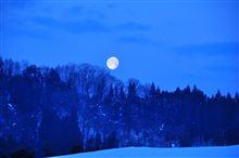 夜明け前の月~♪