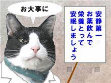 ★お知らせ…★
