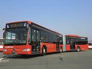 岐阜バスに連結バスが採用された。