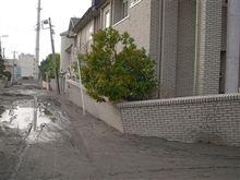 千葉県でもこの被害