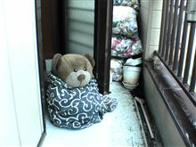 東京は久しぶりの雨