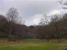 またまた、甘樫丘地区公園に行く!