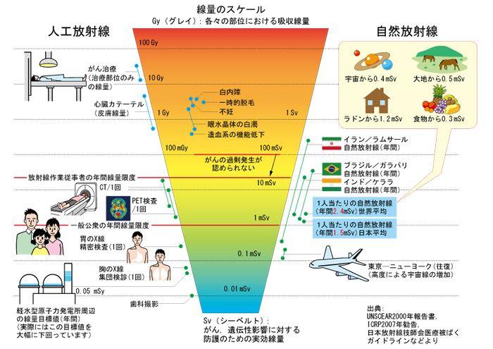 放射線の影響の考え方[等価線量と実効線量を追加]」Yuh_Fazioliの ...