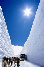 【いきいき富山】 立山に春の訪れ!「立山黒部アルペンルート」開通間近