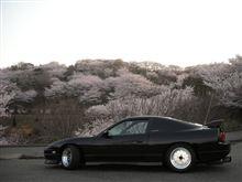 今年も種松山は綺麗です♪