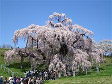 三春滝桜へGo♪ Part2