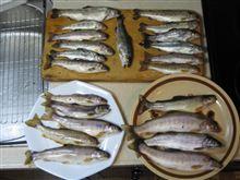 アウトドア仕様シビックEG6 渓流釣り 釣果2