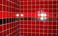 台風の今日は トイレの化粧直し??、、、ご免なさいね。