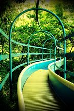 緑の公園^^