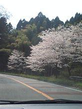 県道35号線③