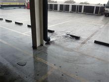 ゲリラ豪雨。゚(゚´Д`゚)゚。