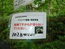 『熊』出没…??