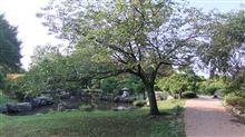 行田水城公園に行ってきました