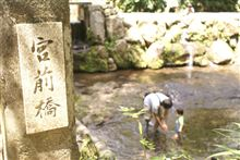 阿蘇の清流で川遊び!