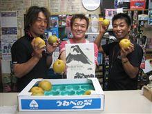 梨と富士土産